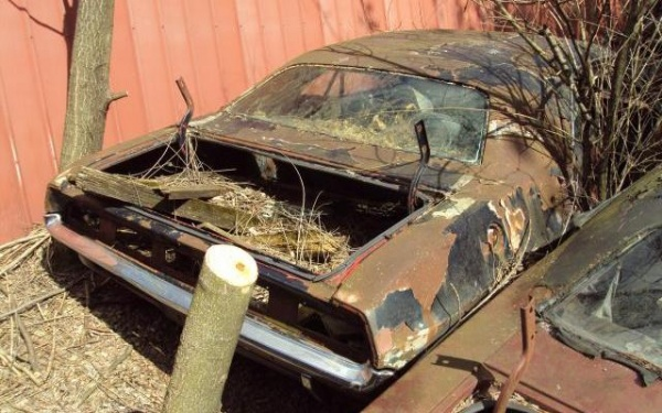 1970-Graveyard-Challenger